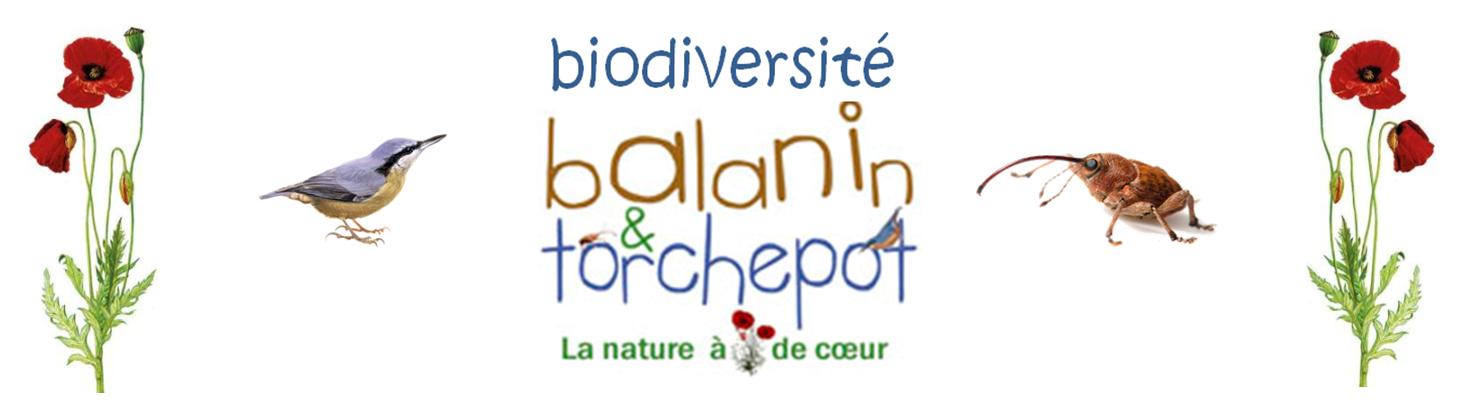 Biodiversité Balanin